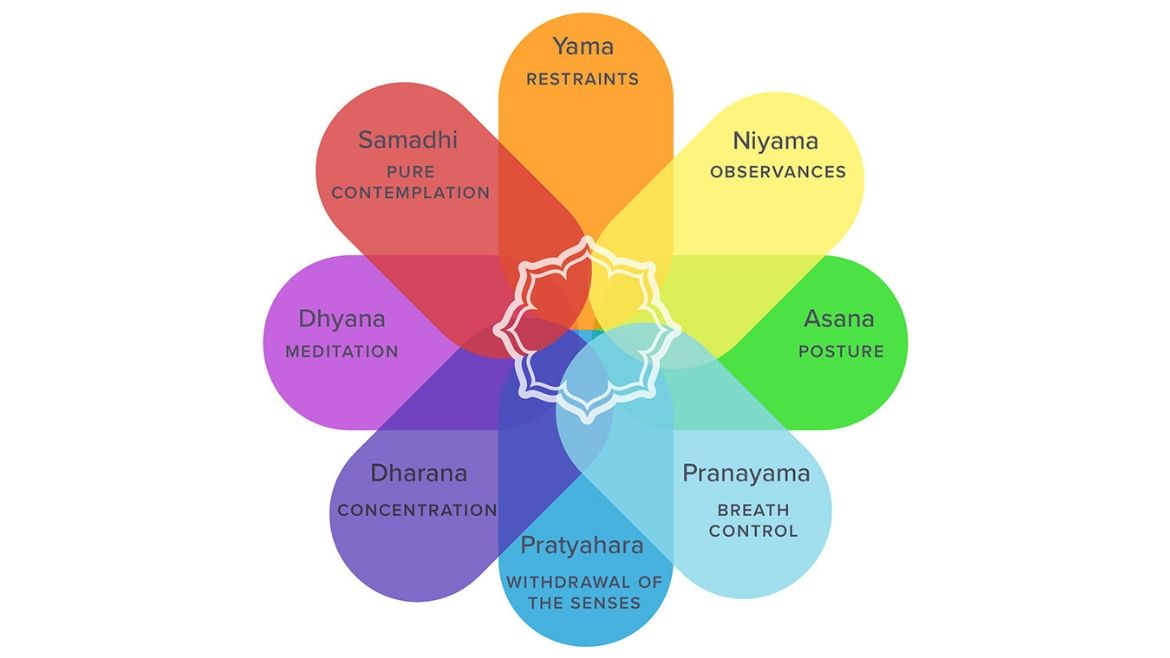 The 8 limbs of yoga
